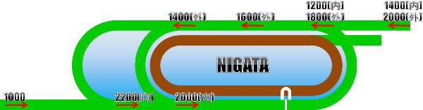 新潟競馬場の芝コース