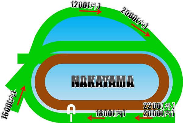 中山競馬場の芝コース