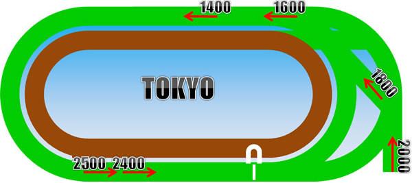 東京競馬場の芝コース