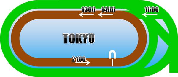 東京競馬場のダートコース