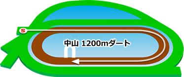 中山競馬場のダート1200mコース