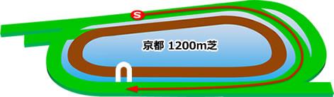 京都競馬場の芝1200mコース