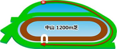 中山競馬場の芝1200mコース