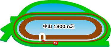 中山競馬場の芝1800mコース