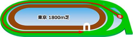 東京競馬場の芝1800mコース