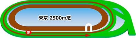 東京競馬場の芝2500mコース