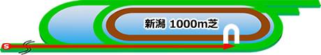 新潟競馬場の芝1000mコース