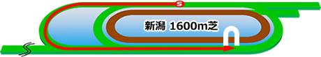 新潟競馬場の芝1600mコース