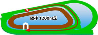 阪神競馬場の芝1200mコース