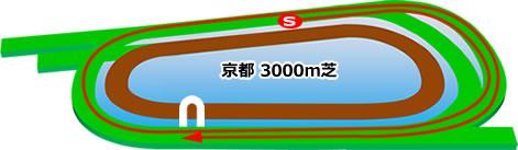 京都競馬場の芝3000mコース