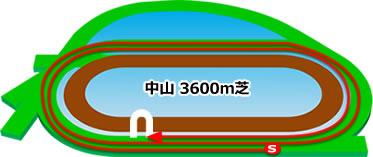中山競馬場の芝3600mコース