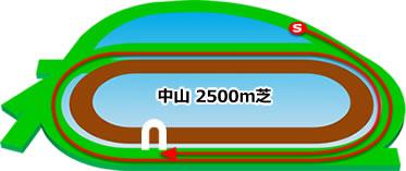 中山競馬場の芝2500mコース