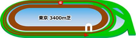 東京競馬場の芝3400mコース