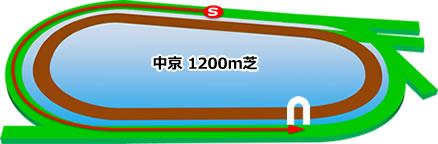中京競馬場の芝1200mコース