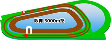 阪神競馬場の芝3000mコース